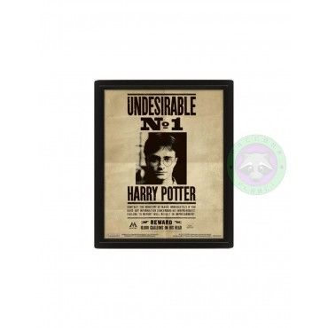 Cuadro 3D Undesirable - Harry Potter